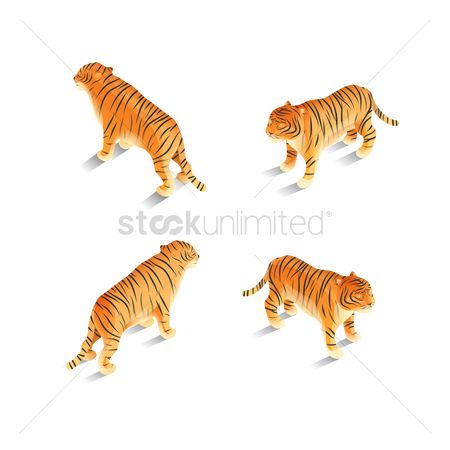 Backview : Isometric tigers