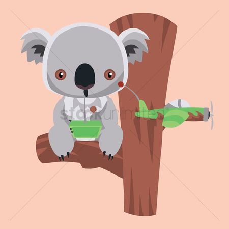 Background : Koala bear sitting on a tree trunk