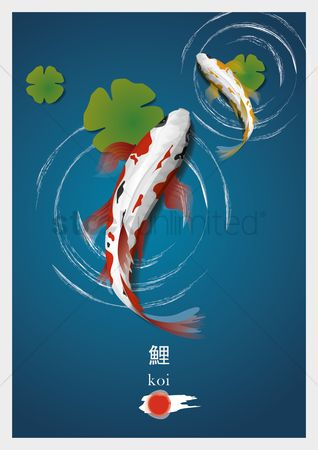 Marine life : Koi fishes