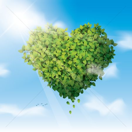 Heart shape : Leaves in the shape of heart