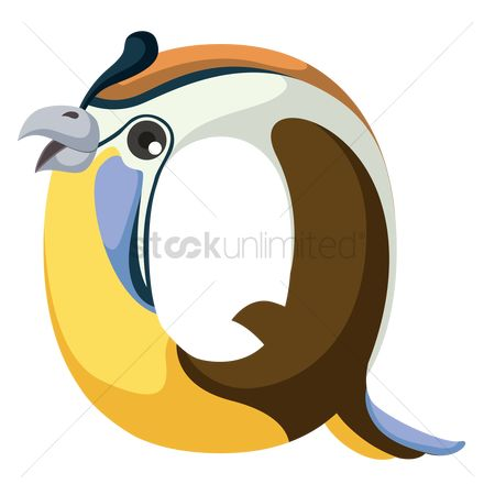 Learn : Letter q for quail