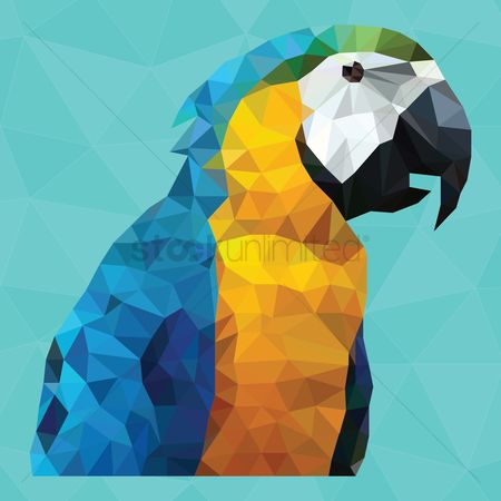 Gradients : Macaw