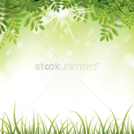 Sunray : Nature background