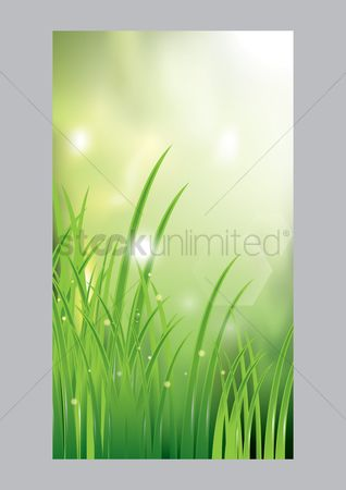 Grass background : Nature mobile wallpaper
