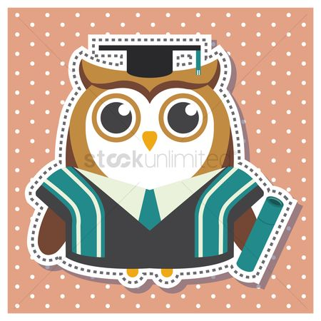 Background : Owl as a graduate