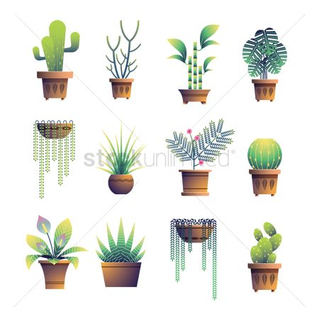 Sets : Potted plant collection