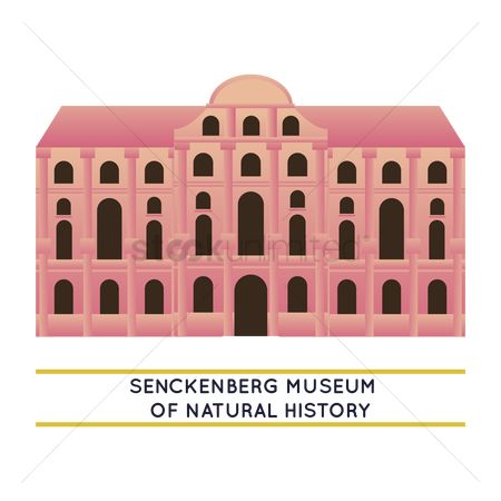 Museums : Senckenberg museum of natural history