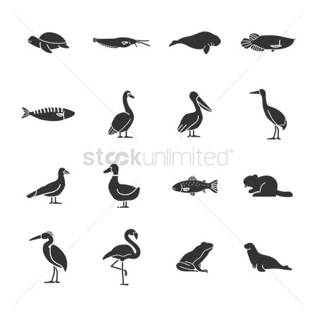 Duck : Set of animal icons