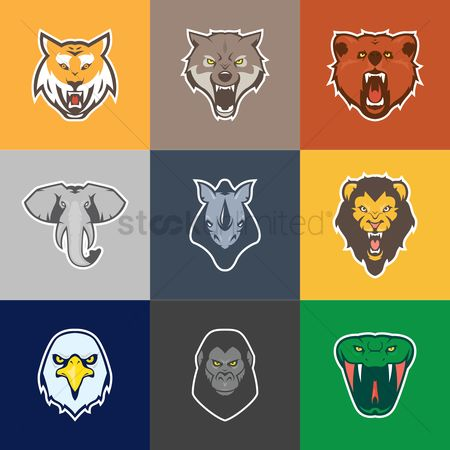 Hawks : Set of animal icons