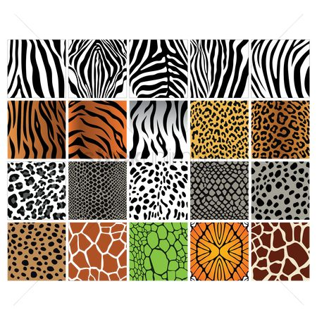 Sets : Set of animal print backgrounds