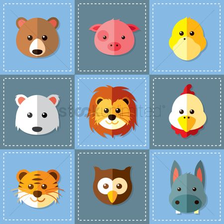 Owl : Set of animals