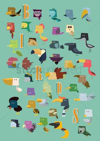 Toco toucan : Set of birds icons