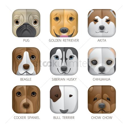 Bull : Set of dog icons