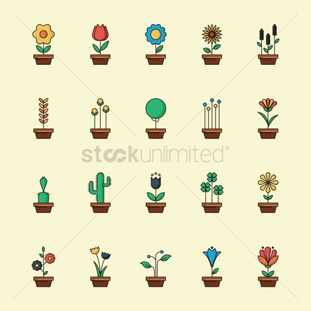 Indoor : Set of potted plants