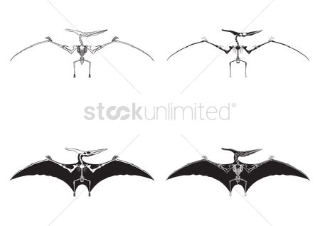 Huge : Set of pteranodon icons