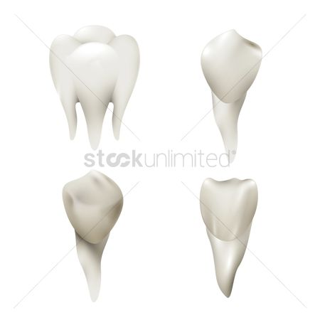 Health cares : Set of teeth