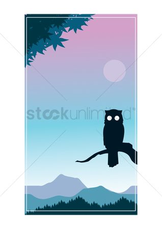 Sceneries : Silhouette of an owl on a branch