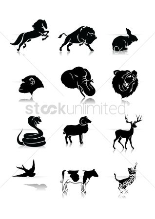 Cow : Silhouette of animals