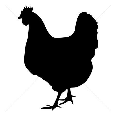 Cutout : Silhouette of hen