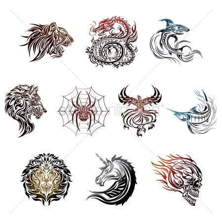 Hawks : Tattoo collection