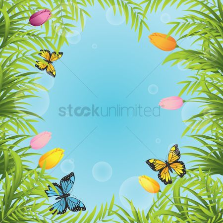 Season : Tulips with butterflies background