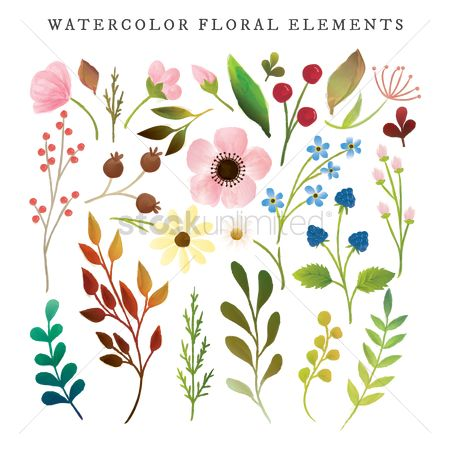 Spring : Watercolor floral elements