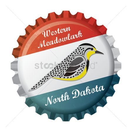 Dakota : Western meadowlark