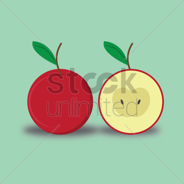 Free apple and its slice vector graphic