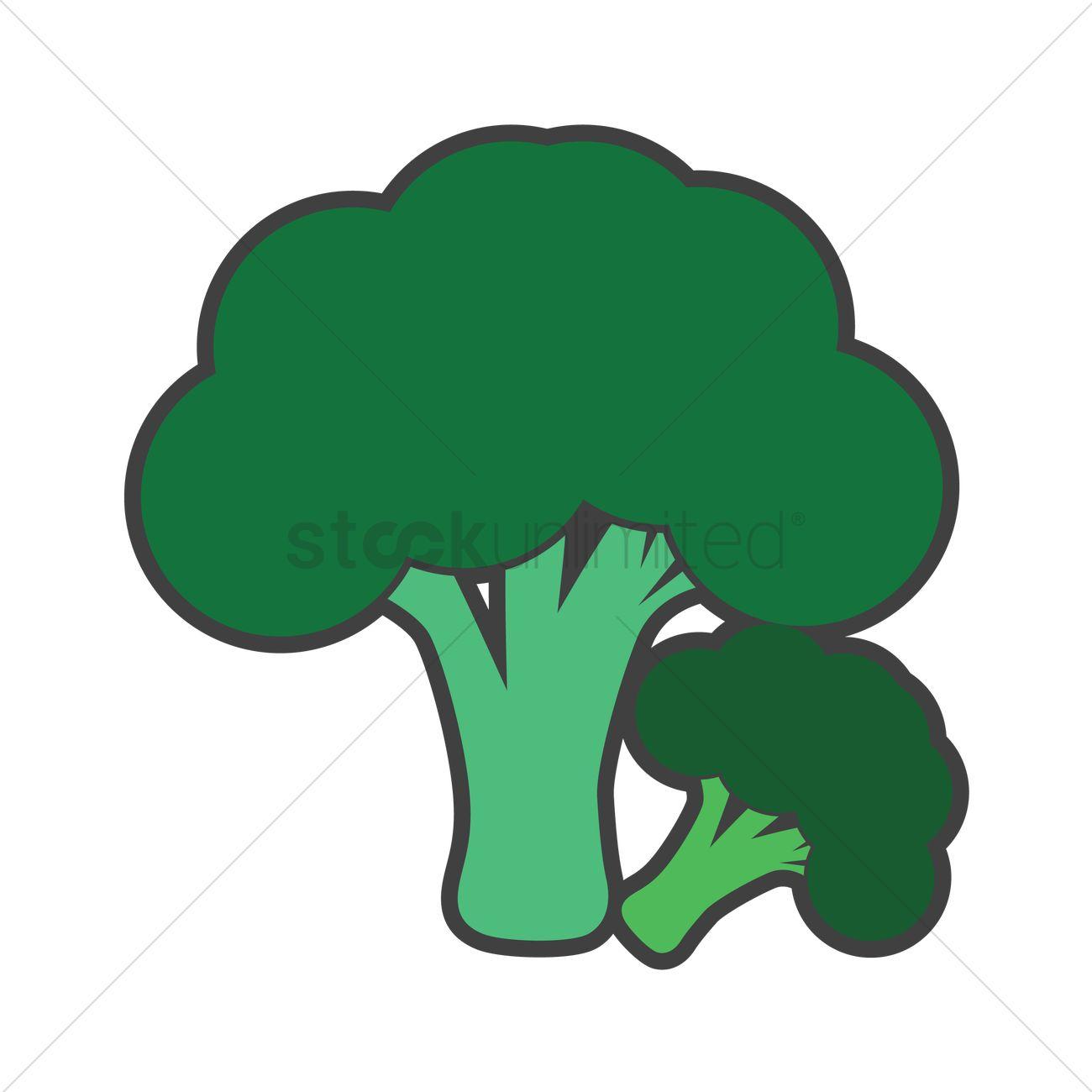 broccoli vector image 1272796 stockunlimited broccoli vector image 1272796