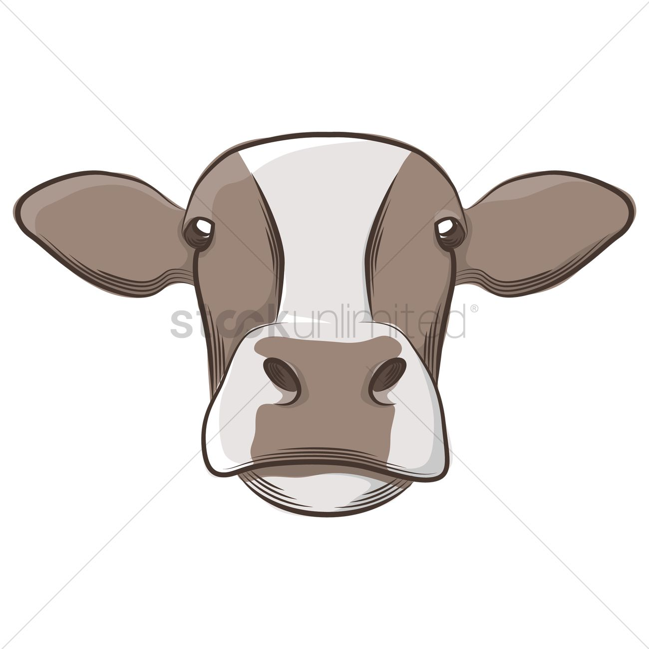 Cow Face Images
