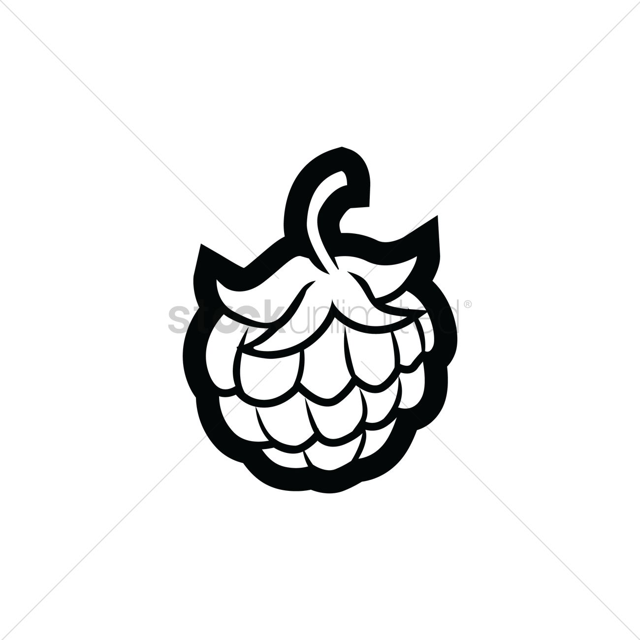 Custard apple Vector Image - 1480980 | StockUnlimited
