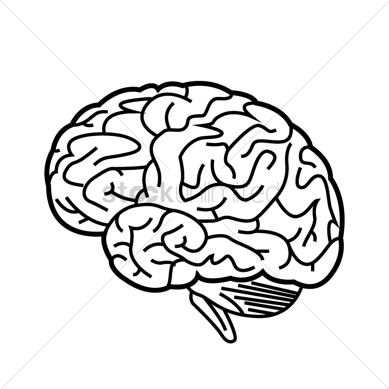 human brain vector image 1523028 stockunlimited rh stockunlimited com brain free vector icon brain free vector icon