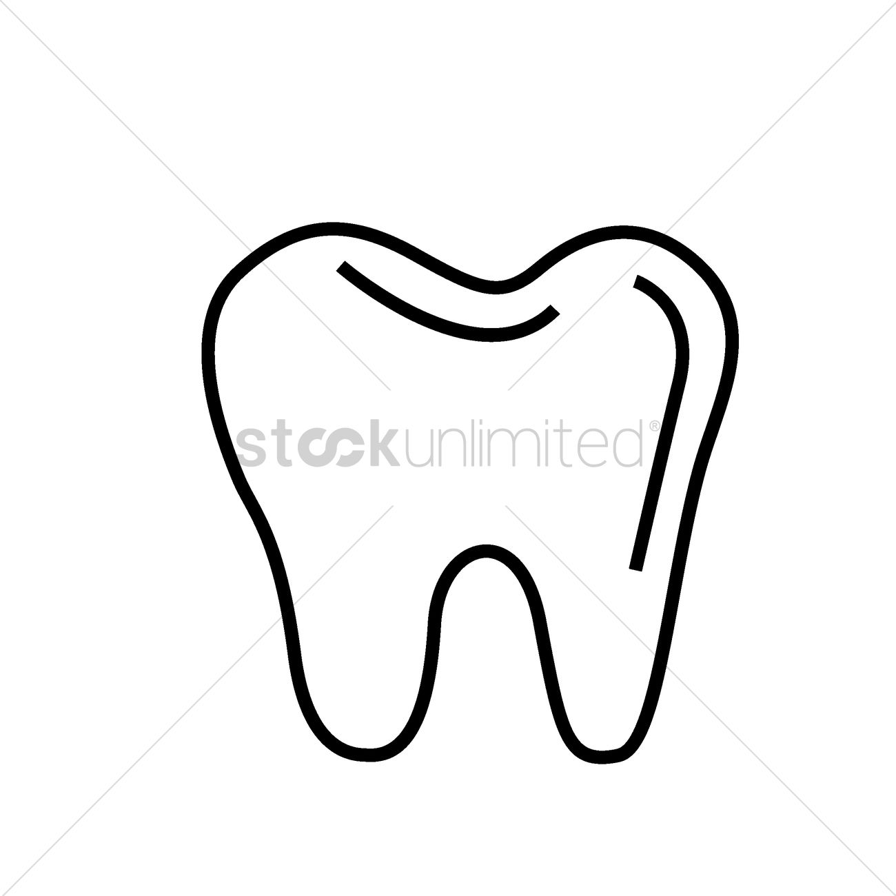 human tooth vector image 1522640 stockunlimited