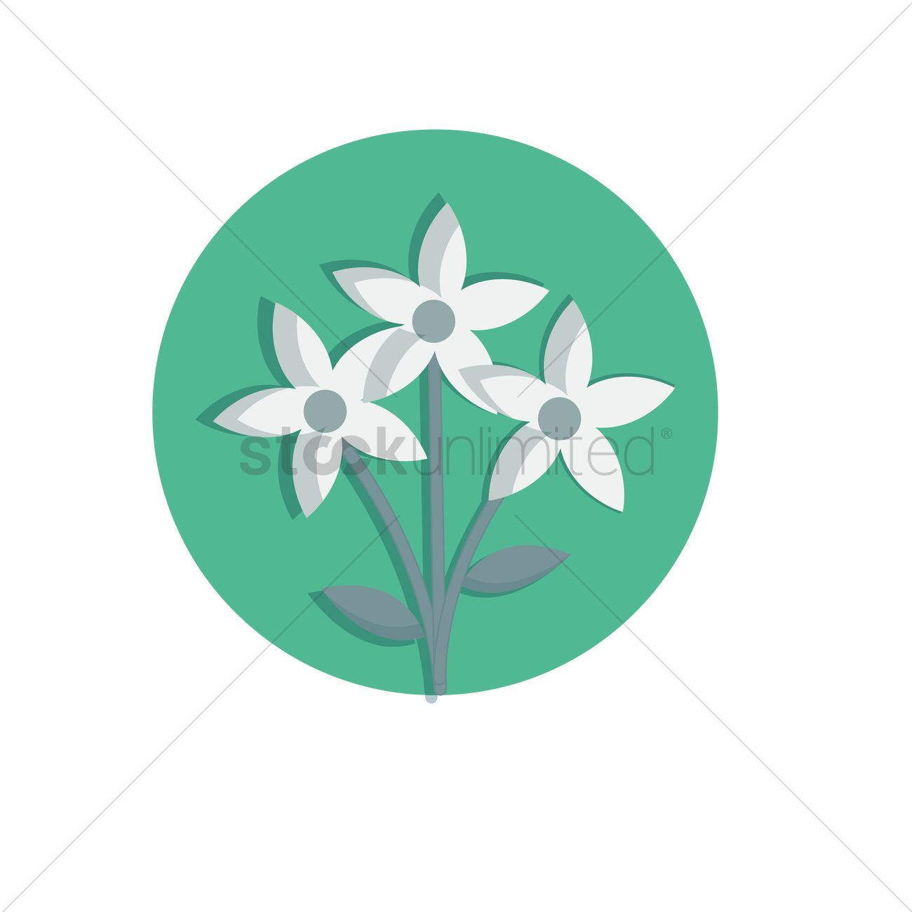 Jasmine Flower Vector Image 1280352 Stockunlimited