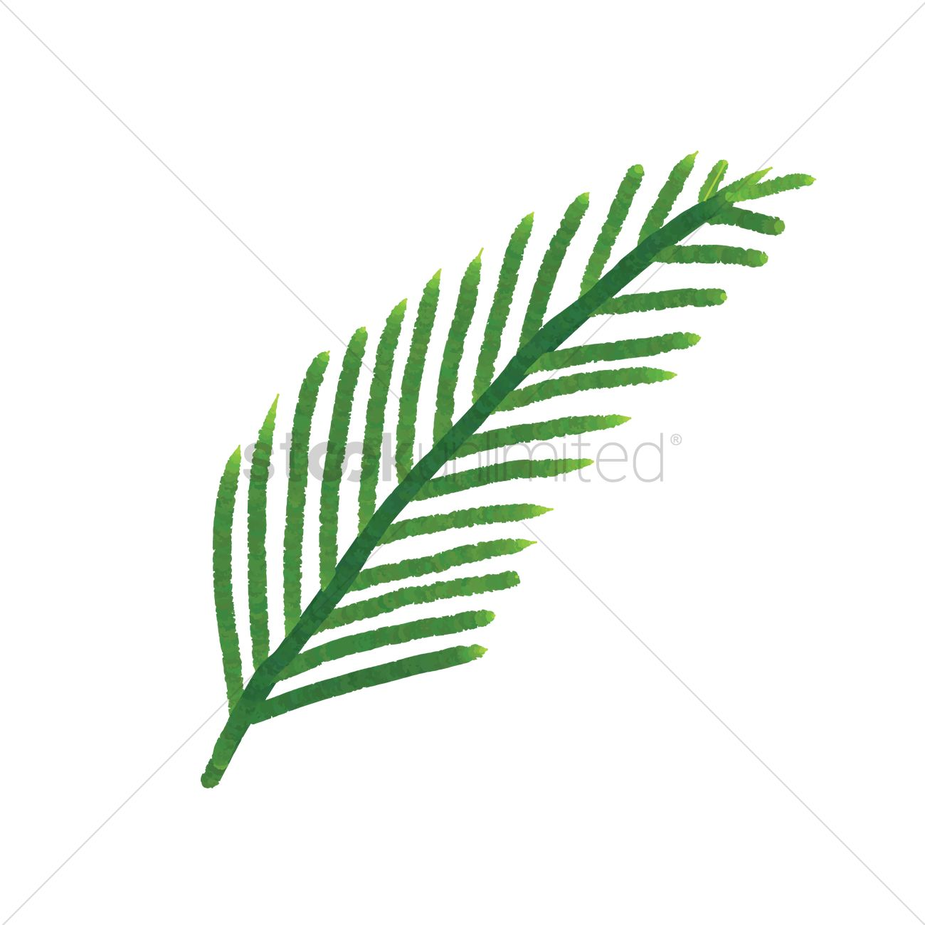 palm leaf vector image 1873480 stockunlimited rh stockunlimited com palm tree leaf vector free palm leaf vector png