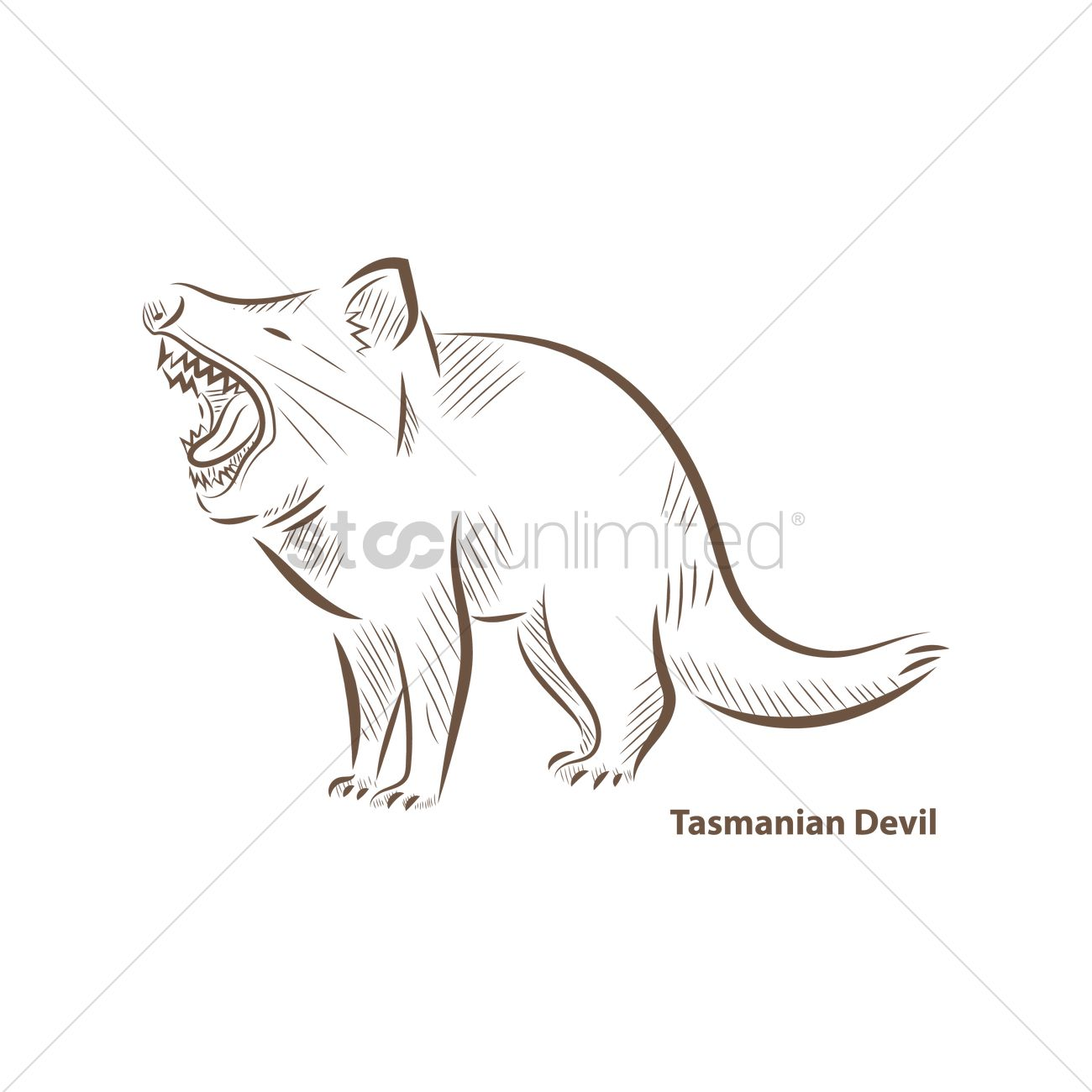 Uncategorized How To Draw A Tasmanian Devil tasmanian devil vector image 1962132 stockunlimited graphic