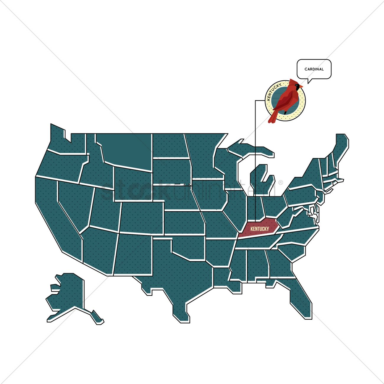 Us Map With Kentucky State Bird Vector Image 1567464 Stockunlimited - Kentucky-on-us-map