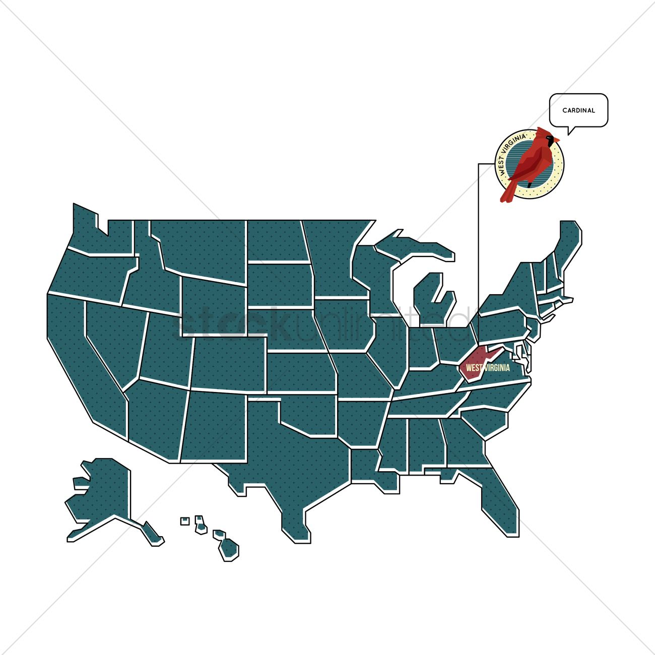 Us map with west virginia state bird Vector Image - 1567468 ...
