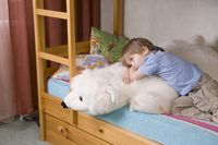 5 year old boy lies on bunk bed with polar bear soft toy