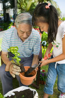 Grandfather and granddaughter gardening