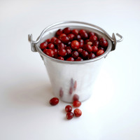 Popular : Red berries stored in an aluminium bucket