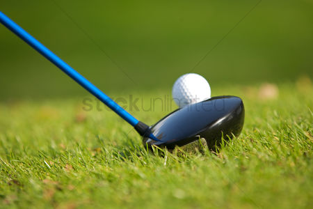 Grass : A golf club on a golf course