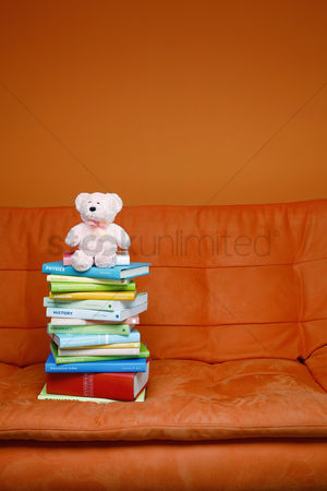 Educational : A stack of books and a teddy bear on the couch