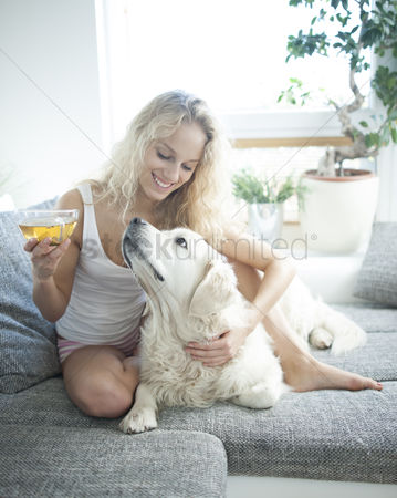 Domesticated animal : Beautiful woman holding tea cup while touching dog on sofa