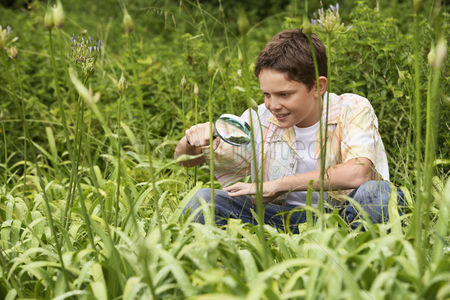 Pre teen : Boy looking at insects with magnifying glass