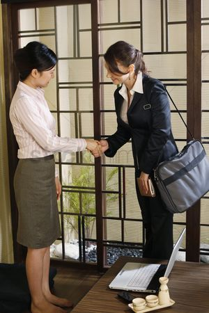 Sets : Businesswomen shaking hands