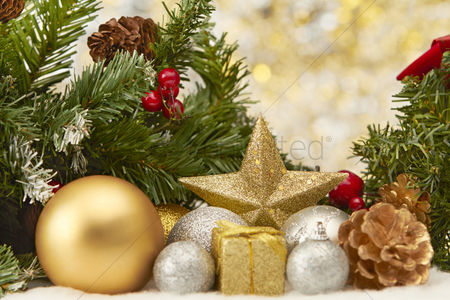 Trees : Christmas theme decoration with copy space