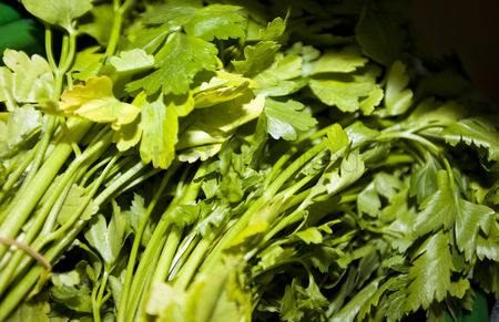Supermarket : Close-up of fresh parsley leaves in supermarket