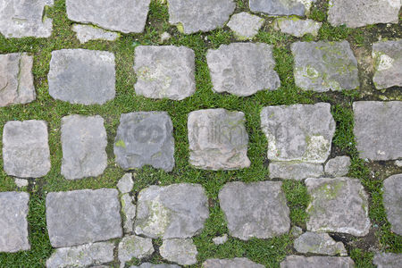 Grass : Close-up view of stone path with grass growing through