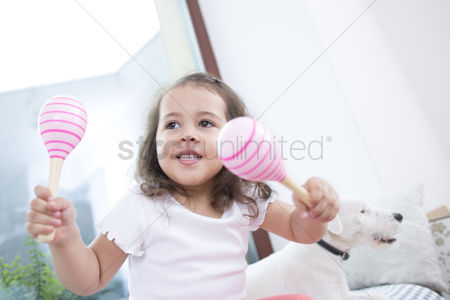 Domesticated animal : Cute girl playing with maracas while sitting beside dog at home